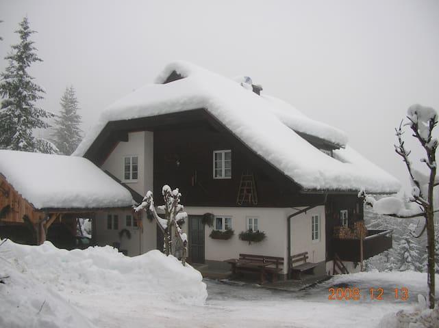 Apartment Almhaus Puschitz 1 (40qm) - Verditz - Chalet