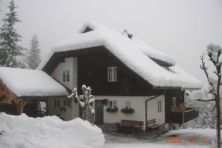 Apartment Almhaus Puschitz 1 (40qm) - Verditz