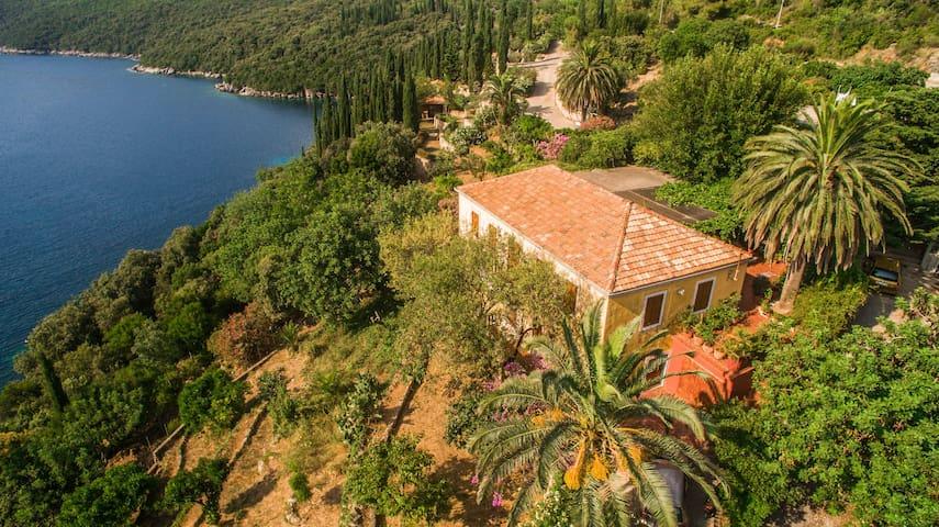 Villa Palma - Molunat - Huvila