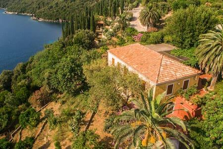 Villa Palma - Molunat
