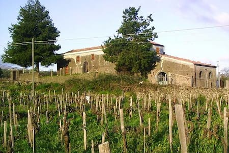 Casale degli Zappini - Solicchiata - Rumah