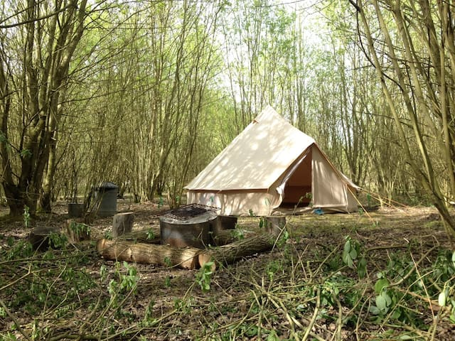 Woodland Wild Camp In A Bell Tent (3 person)