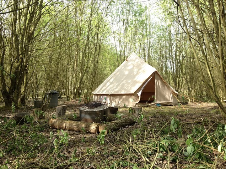 Woodland Wild Camp In A Bell Tent (4 person)