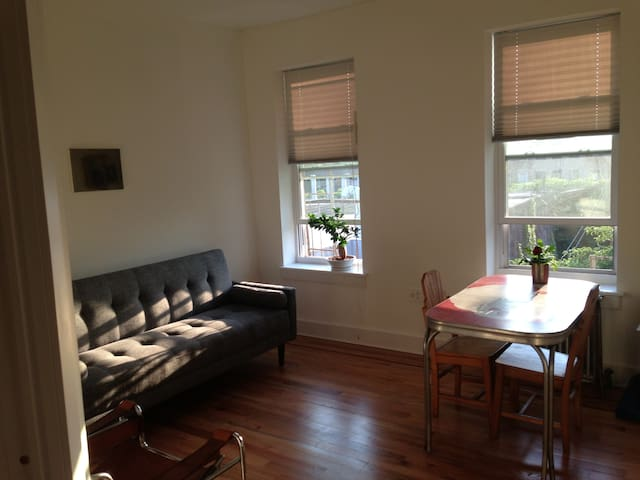 Sunny, Quiet! Lovely 1 Bedroom in Prospect Heights