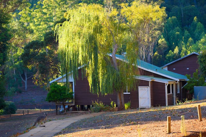 Forrest Cottage. Historic Location - Great Stay