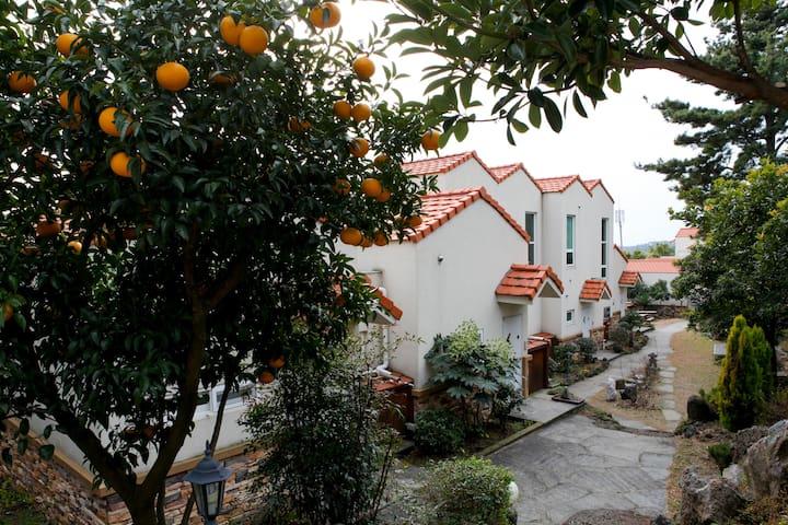 Stay Beautiful House Memory in Jeju - Seogwipo-si - Villa