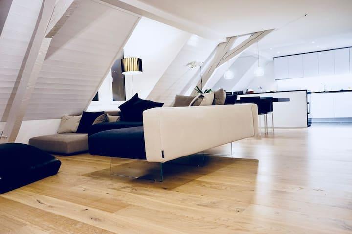 Luxury Downtown Penthouse Duplex Apartment