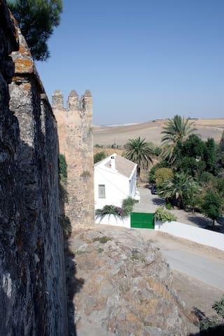 Casa Castillo de Las Aguzaderas. - Sevilla - Ev
