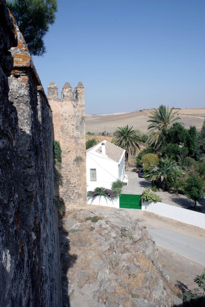 Casa Castillo de Las Aguzaderas.
