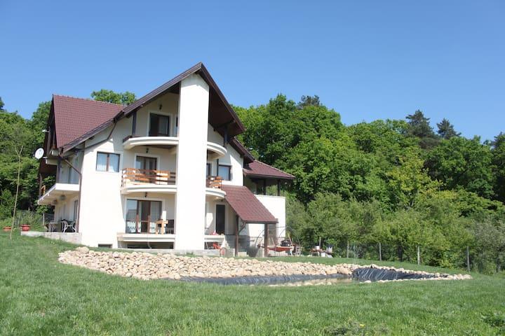 Forest Villa - Cisnădioara