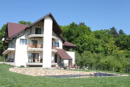 Forest Villa - Cisnădioara - 獨棟