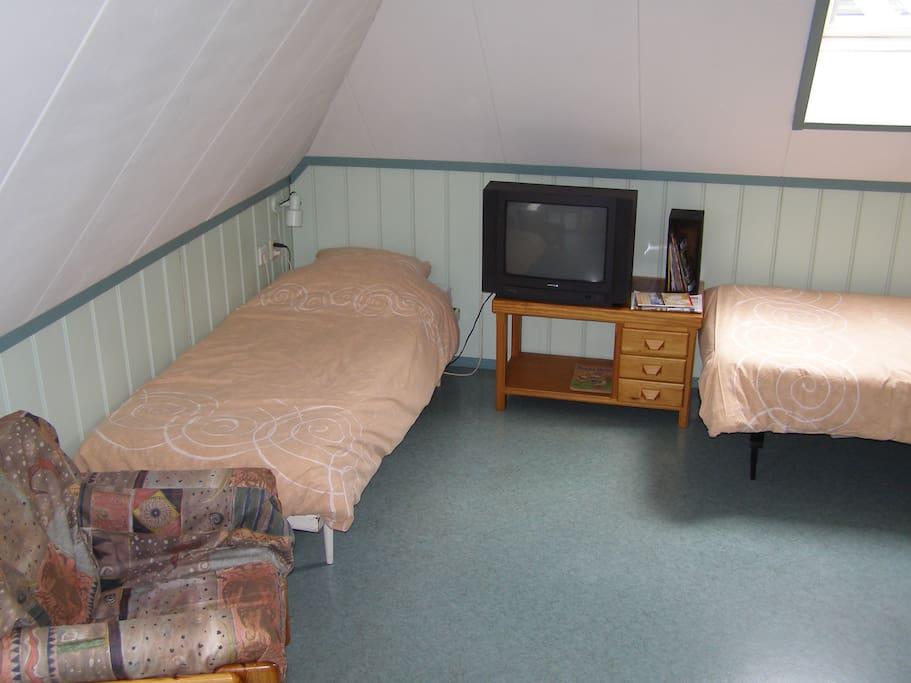Ruime kamer met twee éénpersoonsbedden, tafel met 2 banken en fauteuil