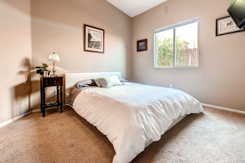 Your room with Queen bed and comfy down comforter