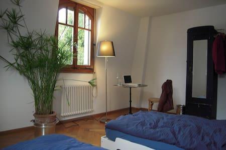 Schönes ruhiges Zimmer in Basel - Basel