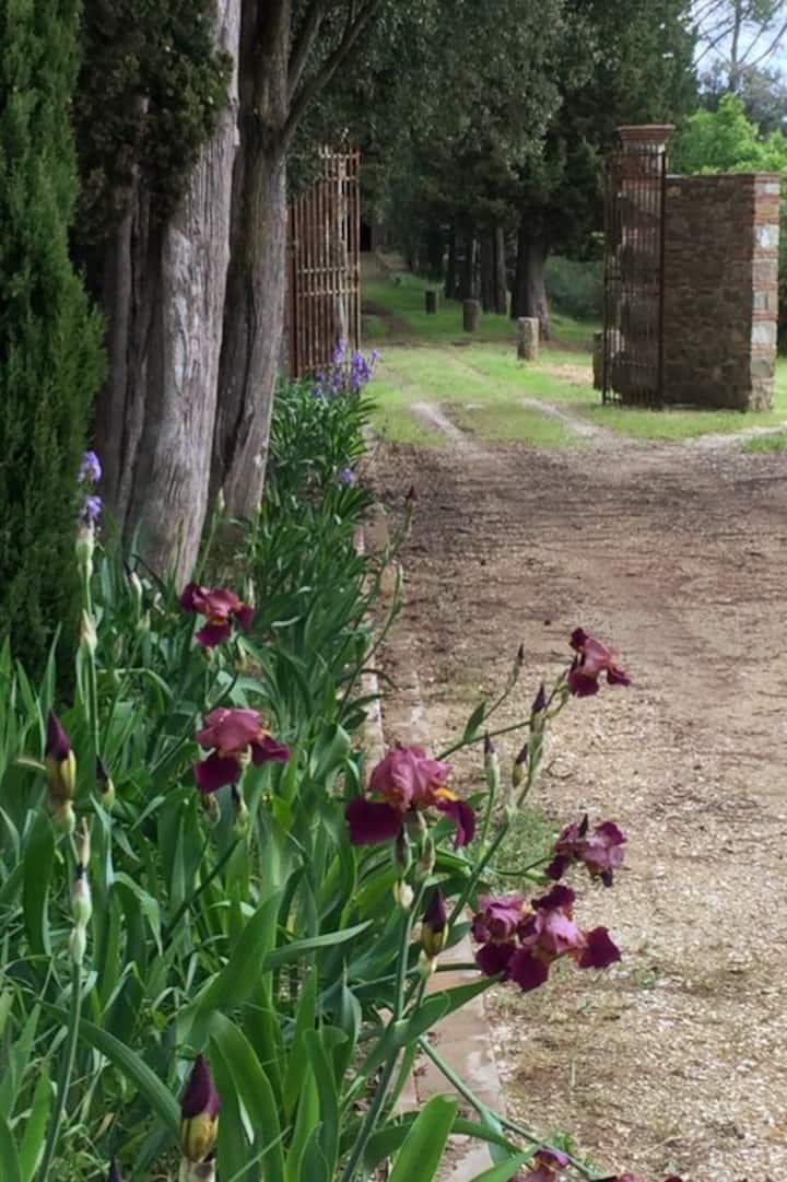 Parco della Pia entrance