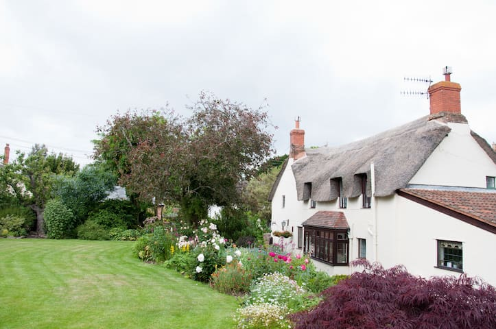 Delightful thatched cottage B&B - Williton - Bed & Breakfast