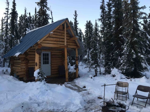 Authentic Alaskan Cabin Tucked In Denali Woods