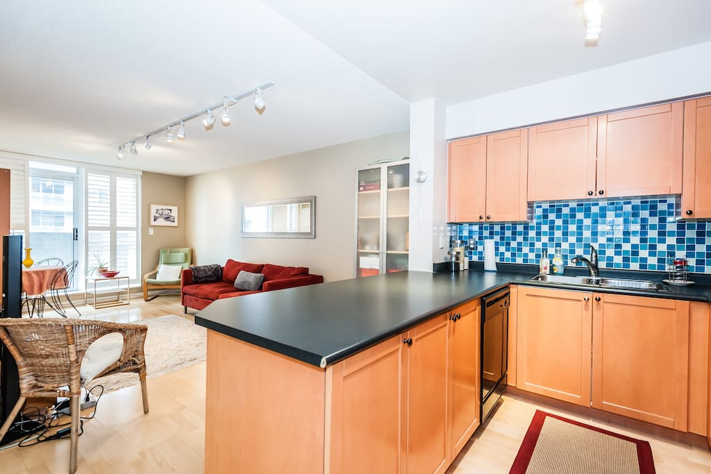Down Town Apartment One Bedroom Apartments For Rent In Toronto Ontario Canada