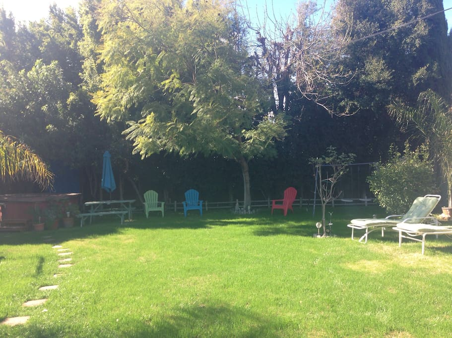 Backyard. Have concerts here monthly in the summer months.