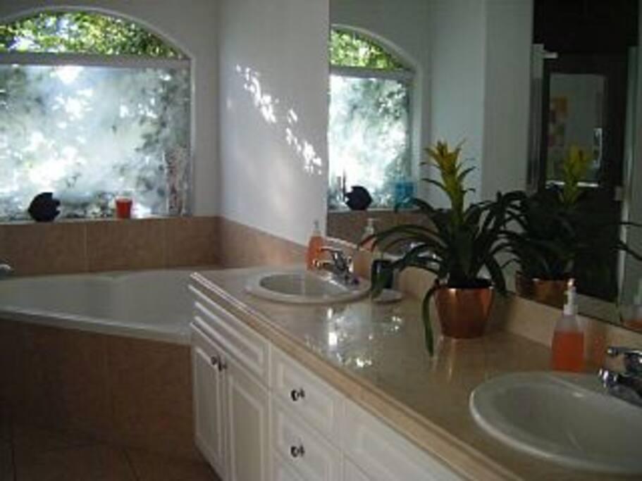 Bathroom with spa.