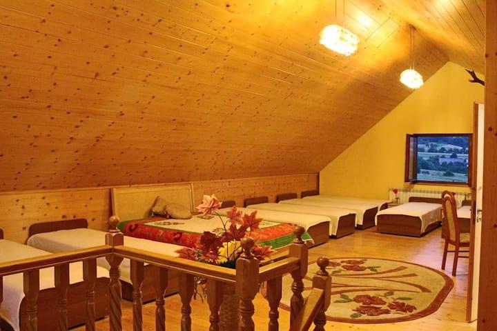Room 6 -10 beds mixed dormitory room
