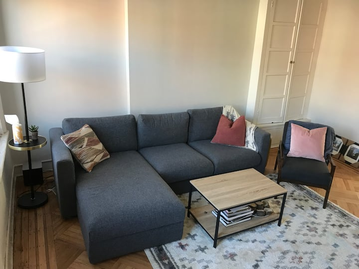 Entire cozy 1.5 bedroom flat in South Slope!