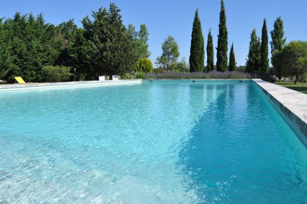 La piscine bio 19mx9m, et son terrain sécurisé.