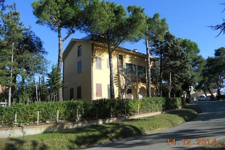 Grande casa con giardino  - Monteciccardo