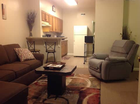 Sydni Suites near the University of Chicago 2-bdrm