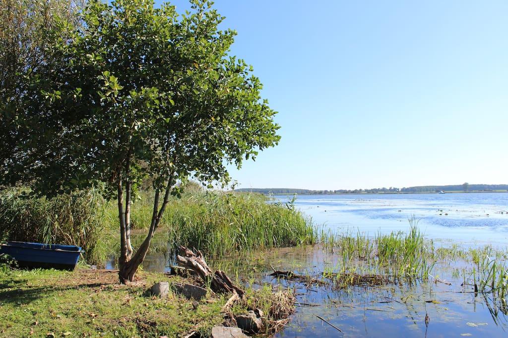 Leihen Sie doch lieber für wenig Geld Fahrräder, Kanu und Ruderboot . Eine Spiel- und Freizeitwiese mit Zugang zum Fluss Dziwna, Feuer- und Grillplatz am Fluss laden zum Verweilen ein, zum Baden und zu Wassersport.