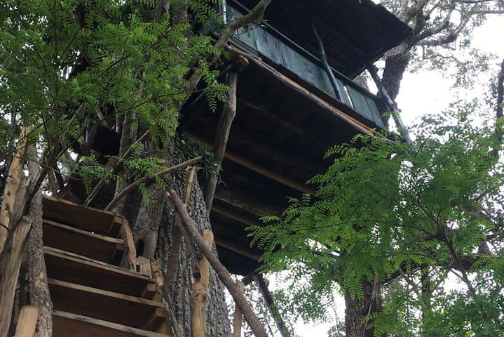 Nature's Nest Bungalow- Tissamaharama