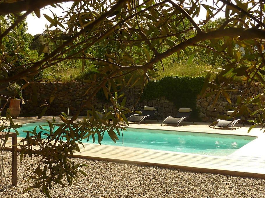 Maison avec piscine et jardin maisons louer for Piscine de draguignan