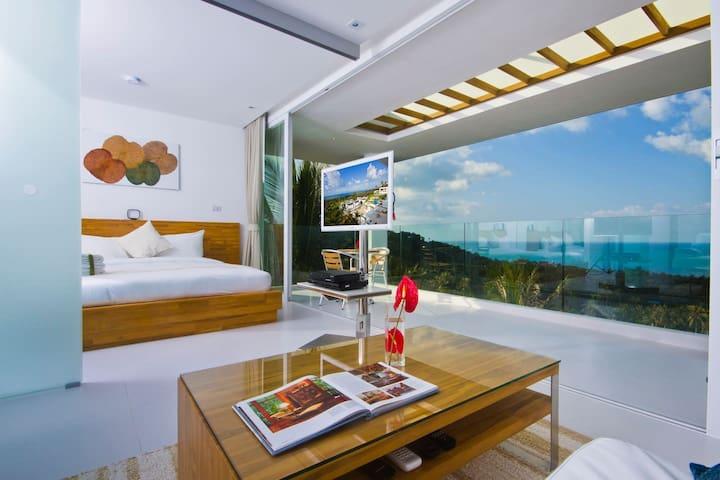 Code 1 Bed Oceanview Suite 209