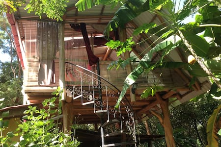 Nature Dive House¬Tree House Like - Nosara