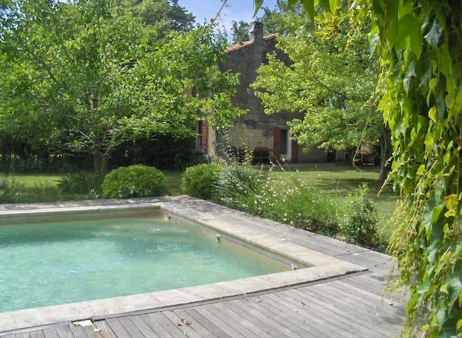la piscine vue de la tonnelle