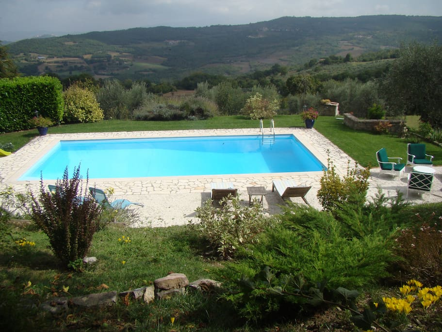 Pool overlooking the olive grove