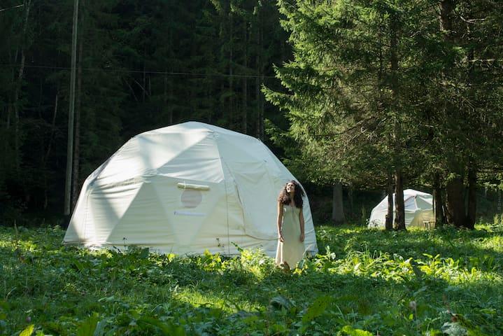 Logement insolite dans dôme géodésique - Lalleyriat - Cabin