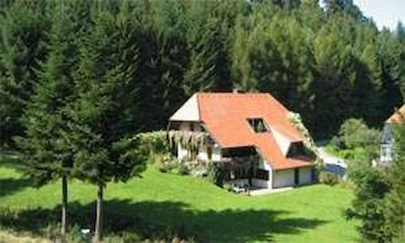 Nicely furnished house idyllically surrounded by a large garden, in a quiet location, ideal for families with children