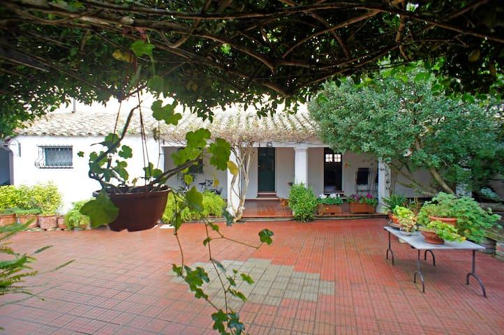 Casa campidanese con piscina - San Sperate