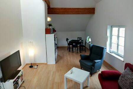 Spacious but Cozy City Apartment - 65m² - Innsbruck - Apartment