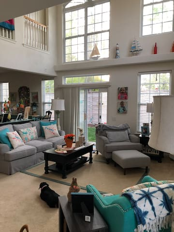 Very open family room with lot's of sunshine
