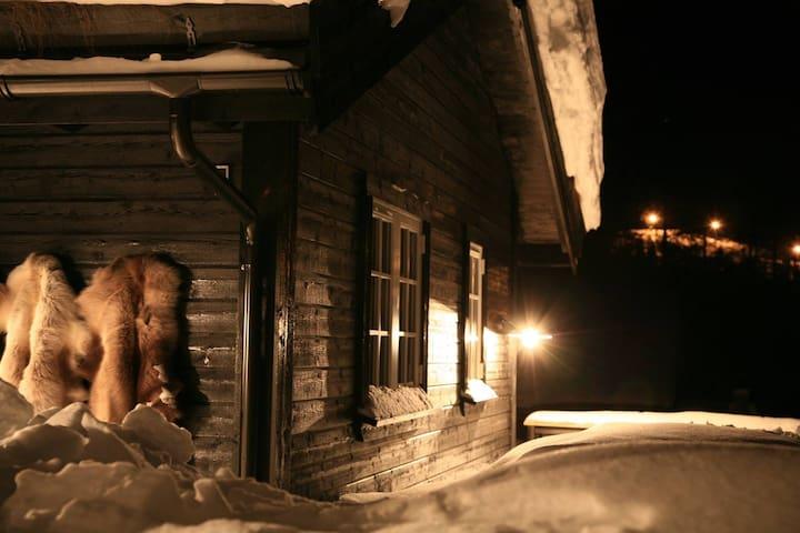 Scandinavische lodge (1) met hottub bij Winterberg