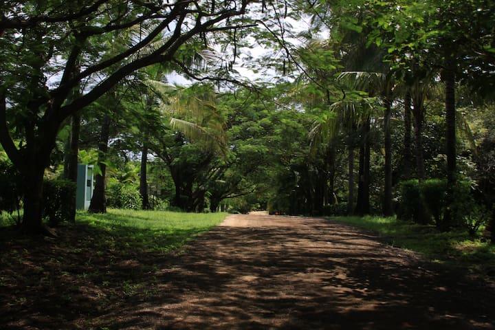 Door to shore is 250 yards along a nice quiet road