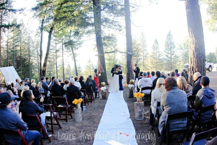 Precious Forest Weddings ! - Lucerne - Chalet