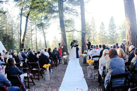 Precious Forest Weddings ! - Lucerne