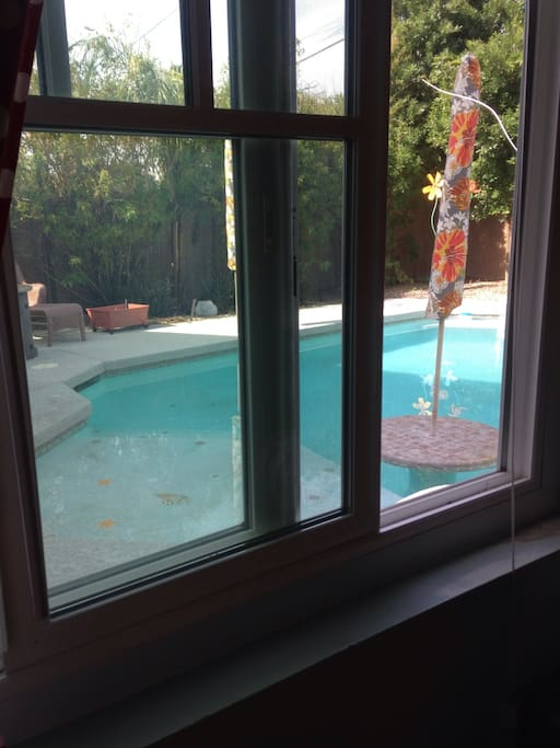 Pool view from kitchenette window