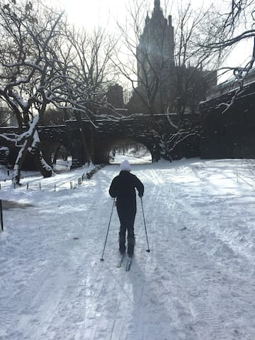 XC-Skiing in Central Park...What?! Yes! We make the most of the snow and our Beautiful City!
