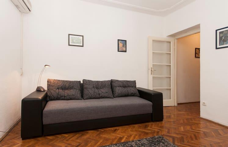 VUK CENTER, FREE pick up 6pm- - Belgrado - Appartamento
