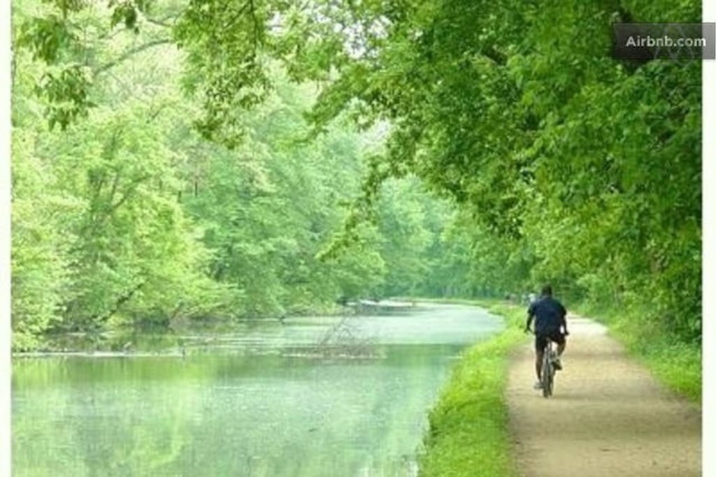 Close to the C&O canal - Capital Crescent bicycle trail, kayaking