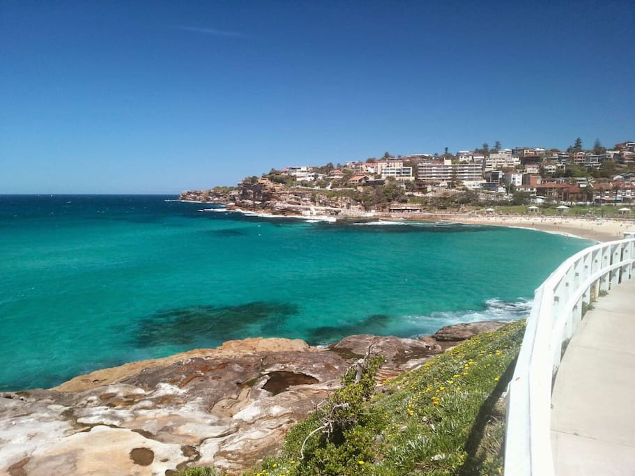 Walk along the gorgeous coastal walk that runs between Bronte and Bondi. Bring your swimmers to splash in at the end to cool down